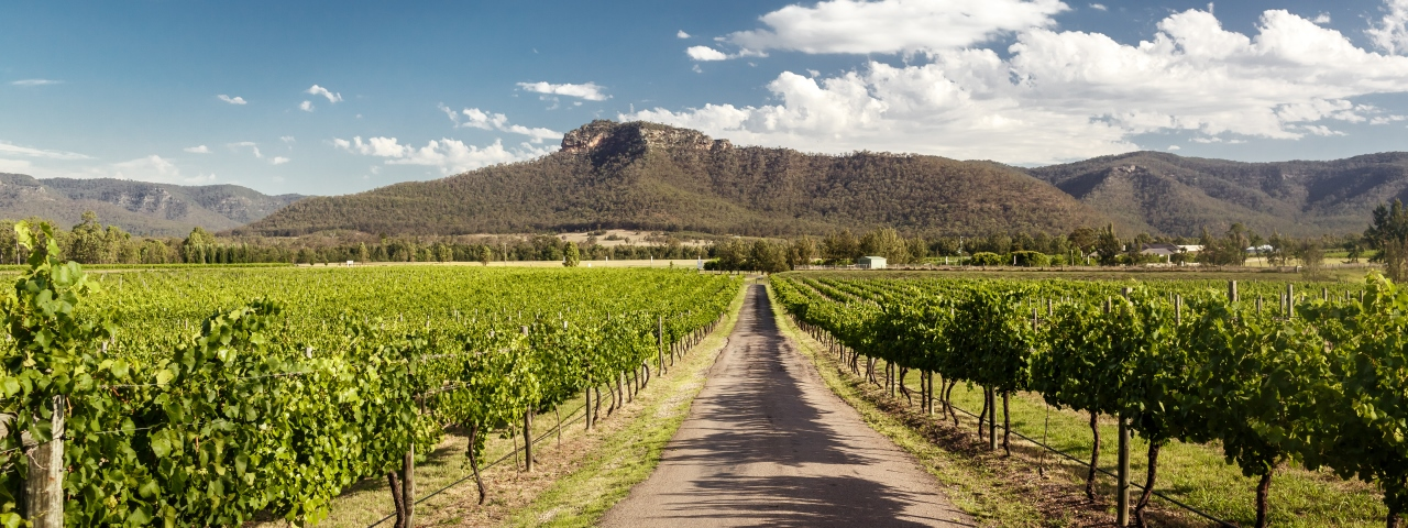 Private Jet Charter to Hunter Valley